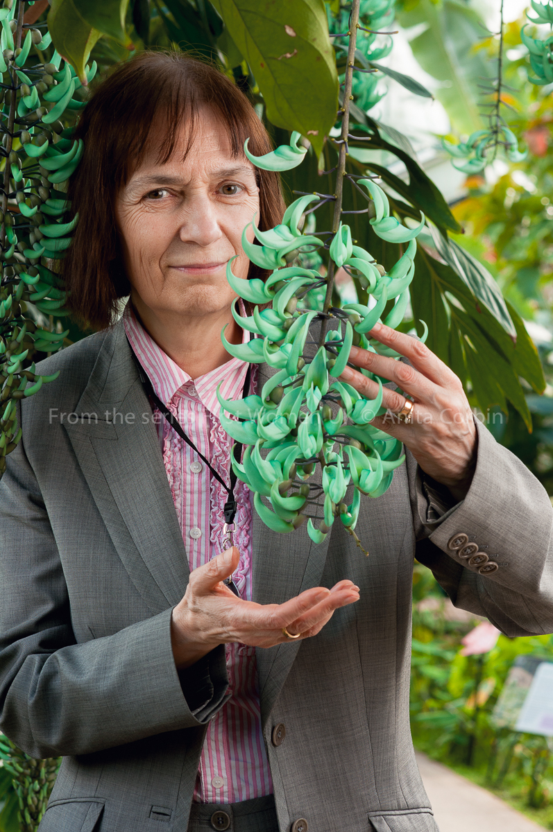 A woman wearing a grey blazer and a pink and blue striped shirt holding the branch of a hanging plant in her hands.